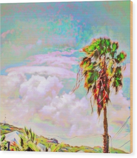 Palm Tree Against Pastel Sky - Square Wood Print