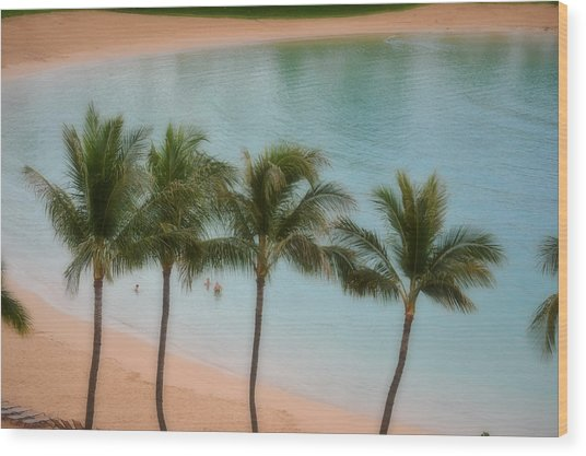 Palm Tree Lagoon Wood Print