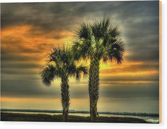 Palm Tree Sunrise Wood Print