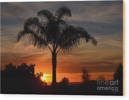 Palm Tree Sunset Wood Print