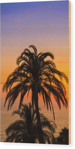 Palm Tree Sunset Vertical Wood Print