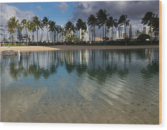 Palm Trees Crystal Clear Lagoon Water And Tropical Fish Wood Print