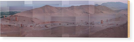 Palmyra Syria Valley Of The Tombs Wood Print