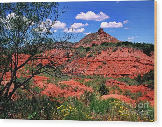 Palo Duro Canyon State Park Wood Print