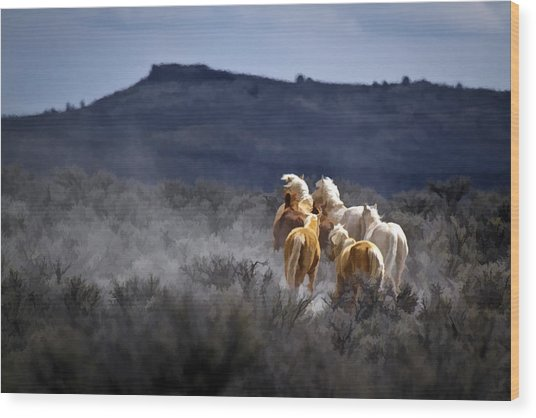 Palomino Buttes Band Wood Print