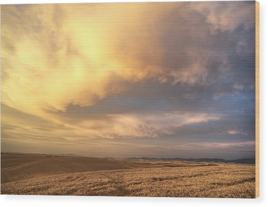 Palouse August Sunset Wood Print