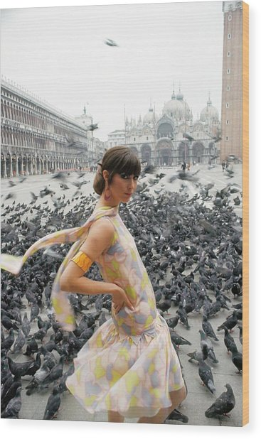 Pamela Barkentin In The Piazza San Marco Wood Print by George Barkentin