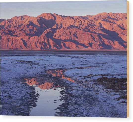 Panamint Reflection 2 Wood Print