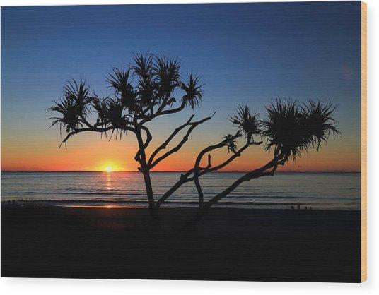 Pandanus Sunrise Wood Print