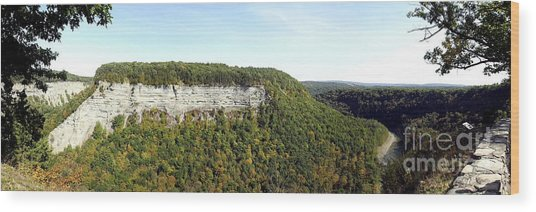Wood Print featuring the photograph Panorama Of Cliff At Letchworth State Park by Rose Santuci-Sofranko