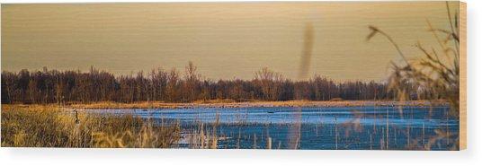 Panoramic Goose Home Wood Print by Bruno Santos