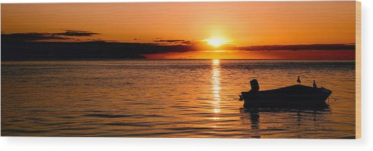 Panoramic Photo Of Sunrise At Monkey Mia Of Australia Wood Print