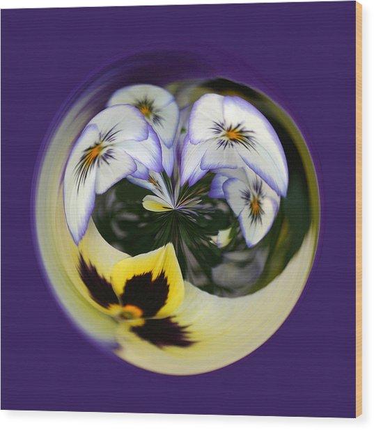 Pansy Ball Wood Print