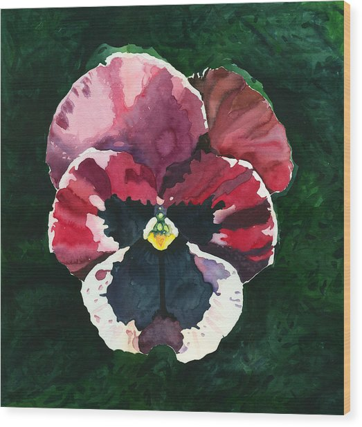 Pansy Red Wood Print
