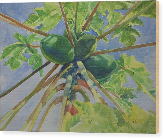 Papaya Wood Print