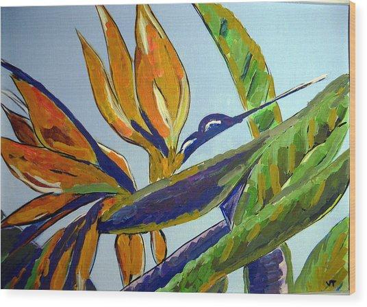 Paradise Bird Flower Wood Print