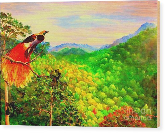 Paradise Bird Of Papua Wood Print