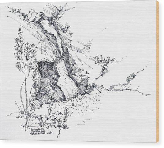 Paradise Falls Thousand Oaks California Wood Print