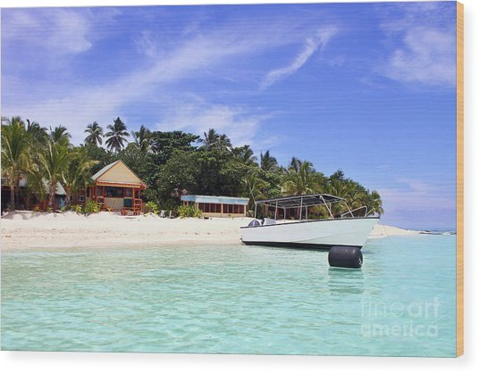 Paradise For Dream Vacation Wood Print by Lars Ruecker