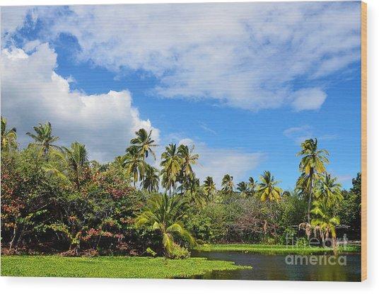 Paradise Lagoon Wood Print