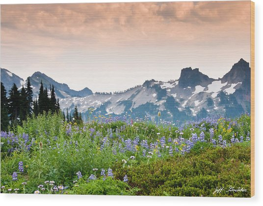Paradise Meadows And The Tatoosh Range Wood Print