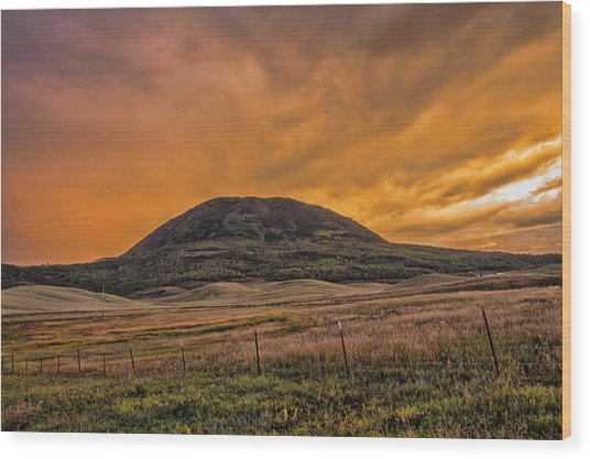 Paradise On Elk Mountain Meadows Wood Print