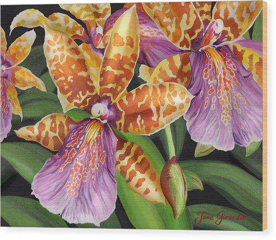Paradise Orchid Wood Print
