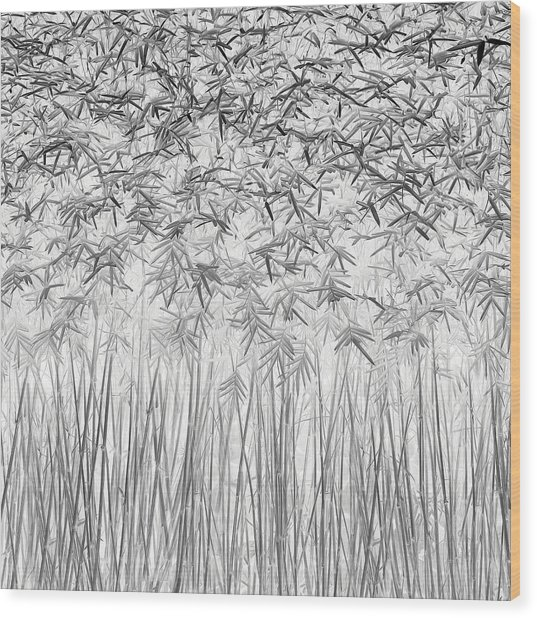 Parallelism Wood Print by Jefflin Ling