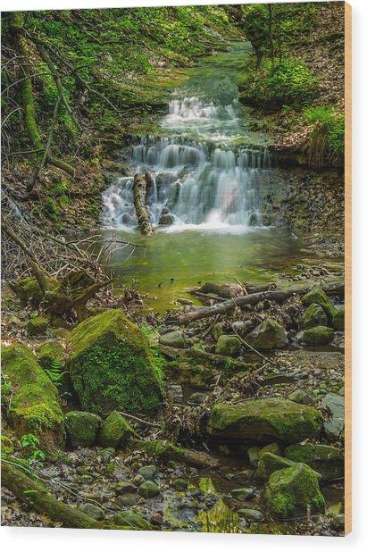 Parfrey's Glen Waterfall Wood Print