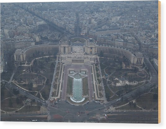 Paris France - Eiffel Tower - 011310 Wood Print by DC Photographer