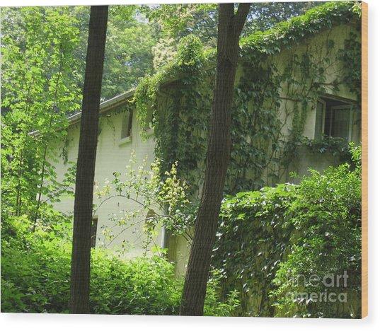 Paris - Green House Wood Print