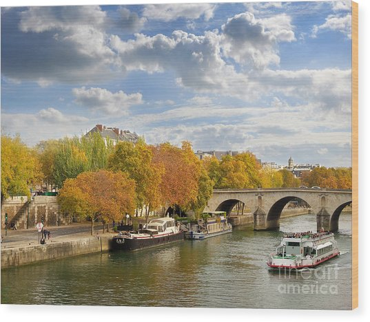Paris In Autumn Wood Print