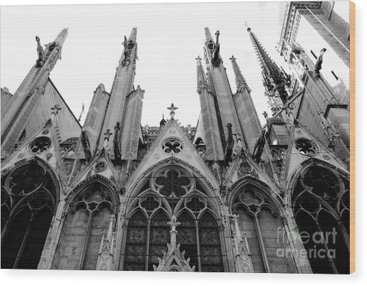 Paris Notre Dame Cathedral Gothic Black And White Gargoyles Architecture Wood Print By Kathy Fornal