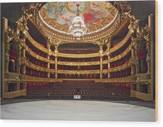 Paris Opera House 2 Wood Print