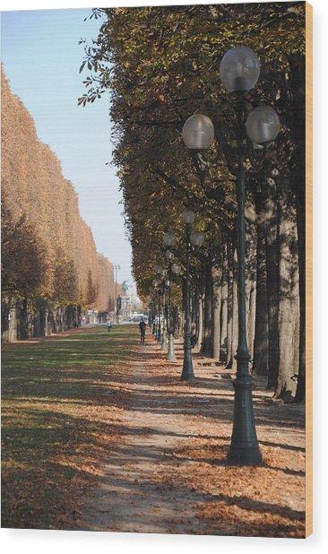 Paris Peaceful Afternoon Wood Print by Jacqueline M Lewis