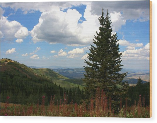 Park City Utah View Wood Print by Darrin Aldridge