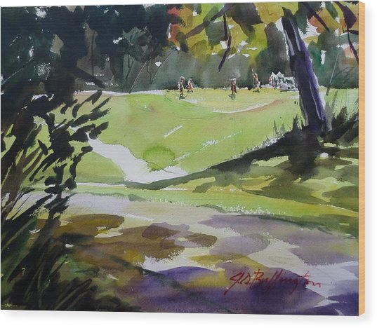 Park Drive IIi Wood Print