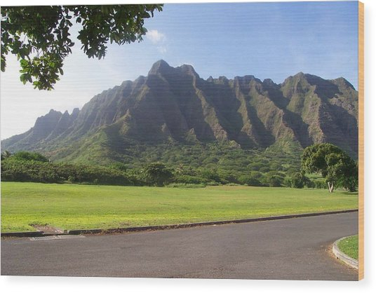Park On Oahu Wood Print