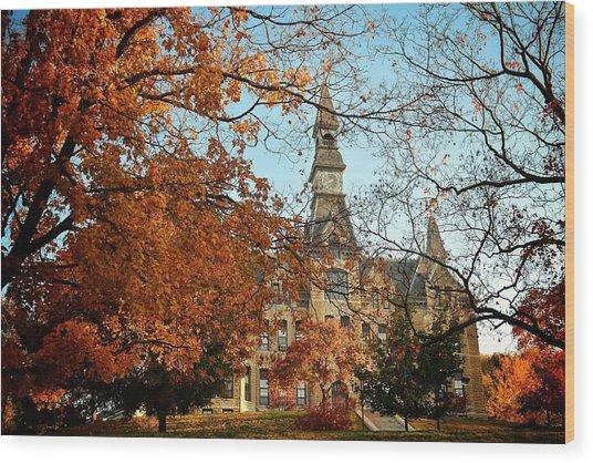 Park University Wood Print