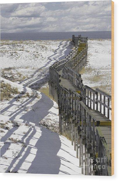 Parker River National Wildlife Refuge Boardwalk Plum Island Wood Print
