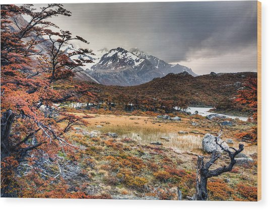 Parque Nacional Los Glaciares Wood Print by Roman St