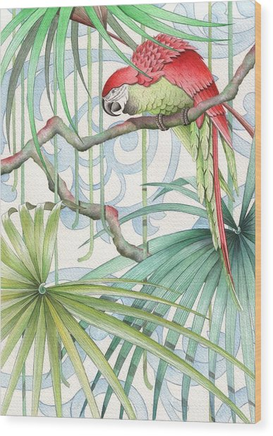 Parrot, 2008 Wood Print