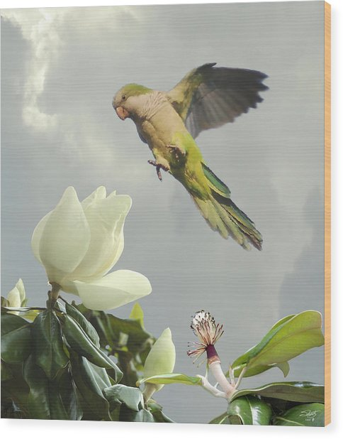 Parrot And Magnolia Tree Wood Print