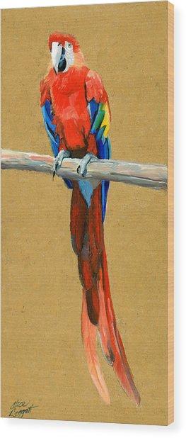 Parrot Perch Wood Print