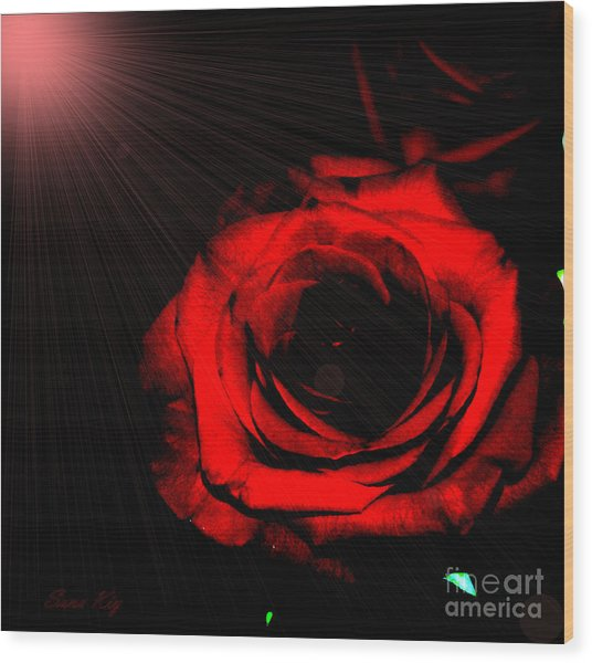 Passion. Red Rose Wood Print