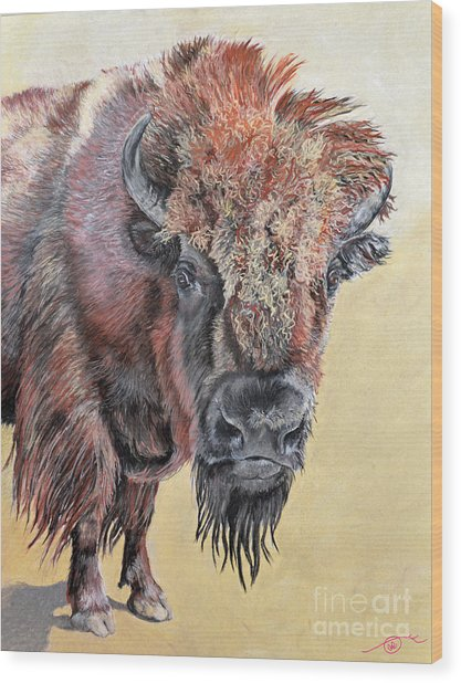 Pastel Buffalo Stare Wood Print by Ann Marie Chaffin