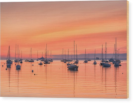 Pastel Harbor Wood Print