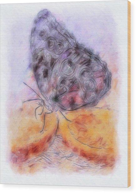 Pastel Orange Julius Wood Print by Jill Balsam