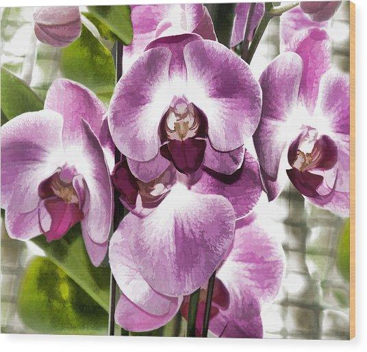 Pastel Orchids Wood Print