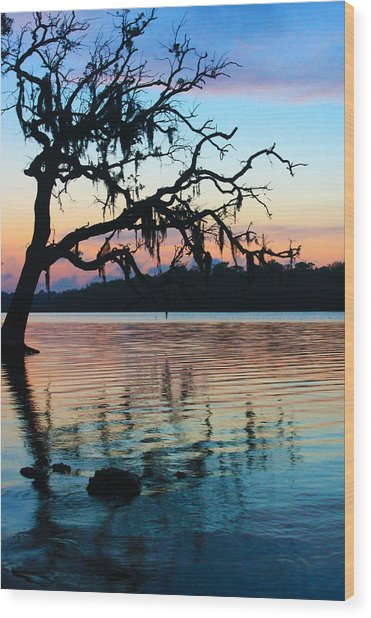 Pastel Reflections Wood Print